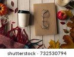 concept of a fall mood ... | Shutterstock . vector #732530794