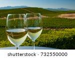 two glasses of white wine...   Shutterstock . vector #732550000