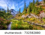 fragment of a trail in mount... | Shutterstock . vector #732582880