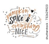 pumpkin spice and everything... | Shutterstock .eps vector #732629023