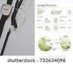budget overview chart on... | Shutterstock . vector #732634096