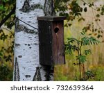 Small photo of Birdhouse attached on birch in Aino Achtés park, Helsinki