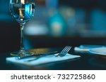 glass of white wine | Shutterstock . vector #732725860