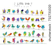 cartoon colorful flock of funny ...   Shutterstock .eps vector #732731020