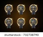 vector vintage badges... | Shutterstock .eps vector #732738790