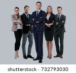 group of smiling business... | Shutterstock . vector #732793030