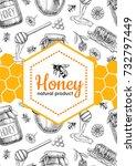 honey bee hand drawn... | Shutterstock . vector #732797449