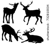 deer silhouette  vector ... | Shutterstock .eps vector #732810034