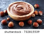 homemade hazelnut spread in...   Shutterstock . vector #732815539