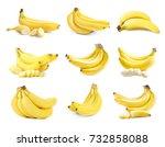 collage of bananas on white... | Shutterstock . vector #732858088