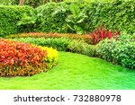green lawn  the front lawn for... | Shutterstock . vector #732880978