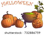 halloween pumpkins  jack o... | Shutterstock .eps vector #732886759