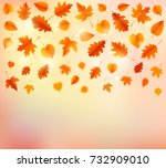 autumn background with leaves.... | Shutterstock .eps vector #732909010