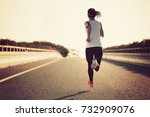 young fitness sport woman... | Shutterstock . vector #732909076