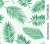 tropical palm leaves pattern  ... | Shutterstock .eps vector #732918826