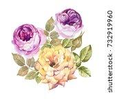 watercolor roses | Shutterstock . vector #732919960