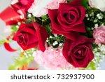 beautiful bouquet of bright... | Shutterstock . vector #732937900