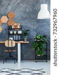 white lamp above plant on shelf ... | Shutterstock . vector #732967960