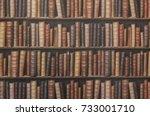 bookcase background | Shutterstock . vector #733001710