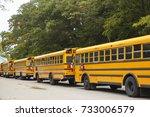 boston ma  usa   october 11 ... | Shutterstock . vector #733006579