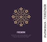 fireworks line icon. vector... | Shutterstock .eps vector #733025608