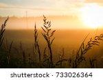 nature | Shutterstock . vector #733026364