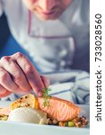 chef in hotel or restaurant... | Shutterstock . vector #733028560