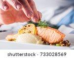 chef in hotel or restaurant... | Shutterstock . vector #733028569