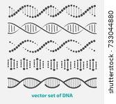 vector set of elements dna. | Shutterstock .eps vector #733044880