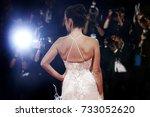venice  italy   september 6  ... | Shutterstock . vector #733052620