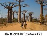 local villagers walking dirt... | Shutterstock . vector #733111534
