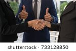 business man show thumb up and... | Shutterstock . vector #733128850