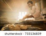 in an artisan bakery  a baker... | Shutterstock . vector #733136839