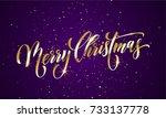 merry christmas wish greeting... | Shutterstock .eps vector #733137778