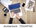 woman hands using computer on... | Shutterstock . vector #733149760