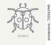 line flat plain vector wildlife ... | Shutterstock .eps vector #733161940