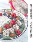 bowl of pudding with superfoods | Shutterstock . vector #733183063