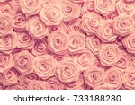 Stock photo wedding roses background light pink roses decoration of the wedding party delicate bride and 733188280