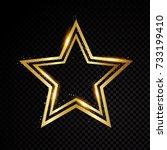 vector star frame. shining... | Shutterstock .eps vector #733199410