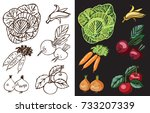 vegetables and fruits on a... | Shutterstock .eps vector #733207339