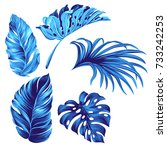set of vector tropical leaves.  | Shutterstock .eps vector #733242253