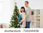 pregnancy  winter holidays and... | Shutterstock . vector #733244458
