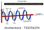 transverse wave infographic... | Shutterstock . vector #733256254