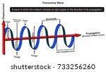 transverse wave infographic... | Shutterstock .eps vector #733256260