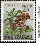 Small photo of NEW ZEALAND - CIRCA 1960: A stamp printed in New Zealand shows Titoki - Alectryon excelsus, circa 1960