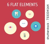 flat icons tooth seal ... | Shutterstock .eps vector #733334164