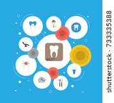 flat icons equipment  tooth... | Shutterstock .eps vector #733335388