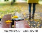 forgotten smartphone on a park... | Shutterstock . vector #733342720