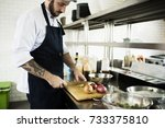 chef working and cooking in the ... | Shutterstock . vector #733375810