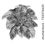 areca palm sketch by hand... | Shutterstock .eps vector #733376620